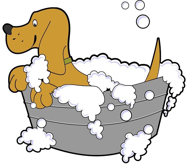 pes ve vaně