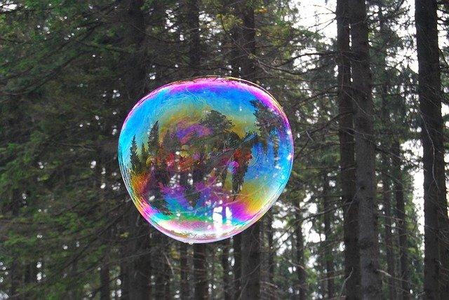 bublina v lese
