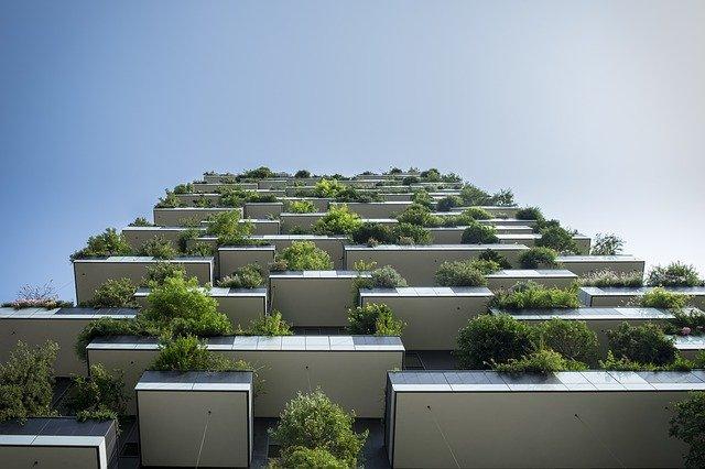 pěstování na balkonech