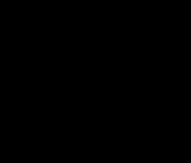 silueta ženy u pc
