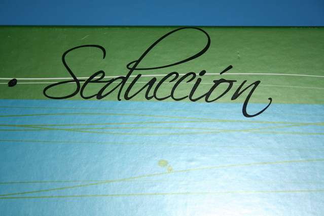 """a sign that says """"Seduction"""" in Spanish on a wall"""